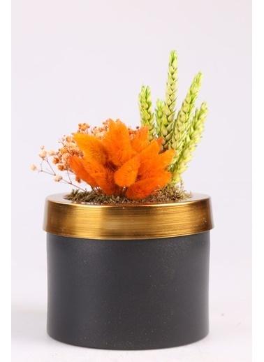 Kibrithane Çiçek Yapay Çiçek Metal Saksı Kuru Çiçek Aranjman Kc00200779 Renkli